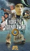 Hornblower - Vévodkyně
