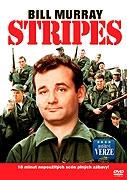Lampasy / Stripes