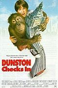Dunston: Sám v hotelu